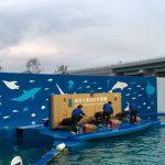 仙台うみの杜水族館、アシカの楽器演奏とサンタ姿のお兄さん #s_uminomori https://t.co/dj4jesEr5W