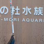 仙台うみの杜水族館、アシカのルーシーちゃん17歳の誕生日 #s_uminomori https://t.co/TT0Dbxixvl