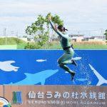 仙台うみの杜水族館、イルカショー、エアリフト https://t.co/qm5mVkrM1D