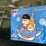 仙台うみの杜水族館、おそ松さん 空想水族館コラボ https://t.co/8NY4ue5HL5