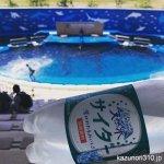#サントリー天然水 #サイダー #仙台うみの杜水族館
