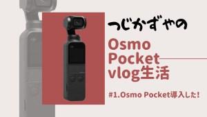 vlog生活#1「Osmo Pocket導入した!」