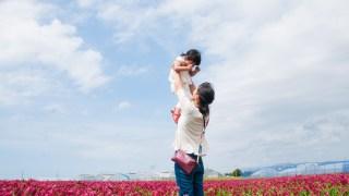 一面の赤い絨毯☆河北潟ひまわり村のストロベリーキャンドルが大人気です