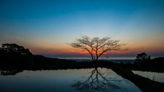 この時期が一番美しい☆金沢市倉ヶ岳の棚田の夕日&マジックアワー