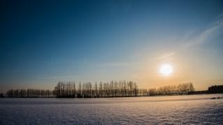 大雪の晴れ間に河北潟・メタセコイア並木と広大な雪原を楽しむ