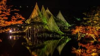 金沢・兼六園の紅葉の昼と夜【ライトアップ秋の段も始まりました】