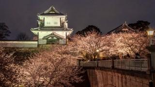 金沢城・兼六園の春のライトアップが始まりました【4月11日まで】