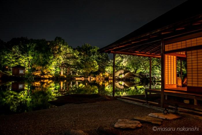 福井・養浩園庭園のライトアップ