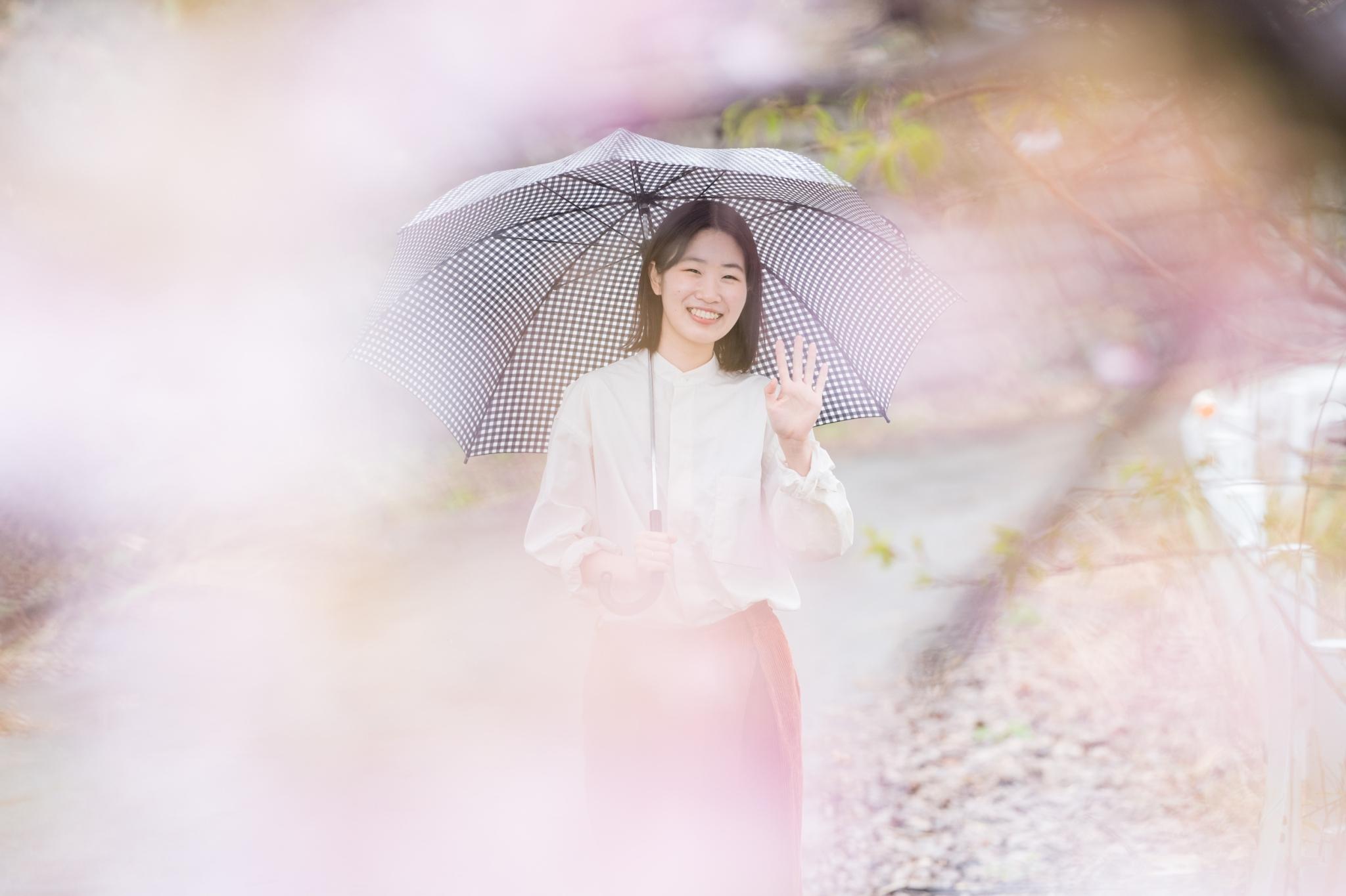金沢市山桜並木