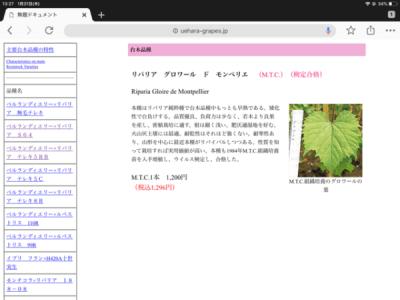 【台木の種類】ブドウの台木は畑に合わせて変える 5