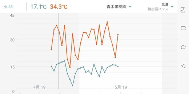 フィンガーライムの灌水方法を解説【ポット栽培における季節ごとの灌水回数と時間】 88