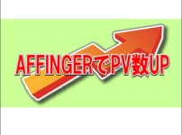 【AFFINGER5でPV数UP】変更後5ヶ月目で月間8万PV達成!【成果の出た記事の書き方のポイント】 8