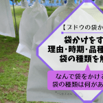 【ブドウの袋かけ】袋かけをする理由・時期・品種ごとの袋の種類を解説 63