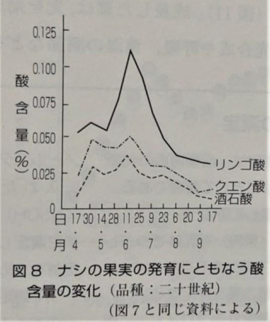 梨の酸含量の変化