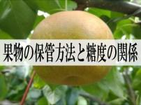 果物の保管方法