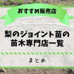 梨のジョイント苗の苗木専門店一覧【まとめ】 35