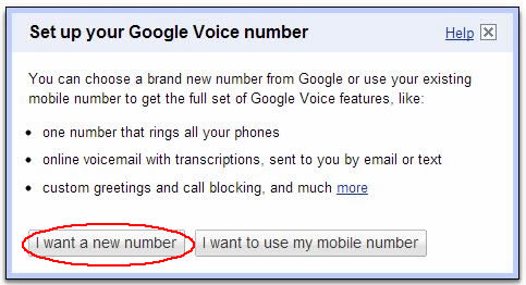 Image of Setting up Google Voice screen