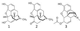 Morphine, Hydromorphone 6-MAM Chemical Structures