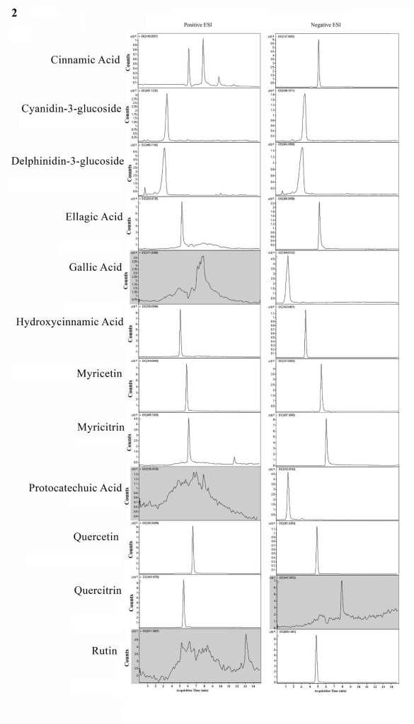 Chromatogram 2 for AppNote