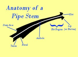 anatomy-of-stem_350_255