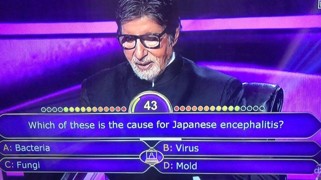 cause of Japan virus