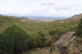 View from the Summit in the Santa Rita Mountains