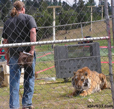 Local animal trainer Randy Miller brought tigers and other animals to RTM.