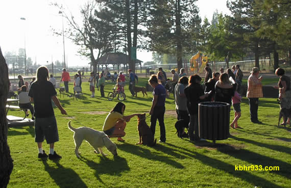 The County's second local dog licensing clinic of the month will be held at Meadow Park on Thursday.