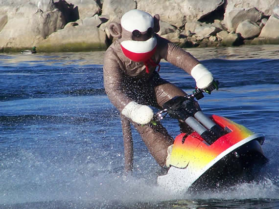 It's not every day you see a sock monkey riding a jet ski on Big Bear Lake. Today's lake temp is about 50 degrees.