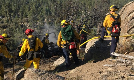 SMALL VEGETATION FIRE IN BIG BEAR CITY  Quickly Brought Under Control by Local Resources
