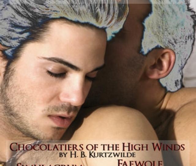 The Circlet Press Gay Romance Bundle Ebook By H B Kurtzwilderian Darcyd M Atkins