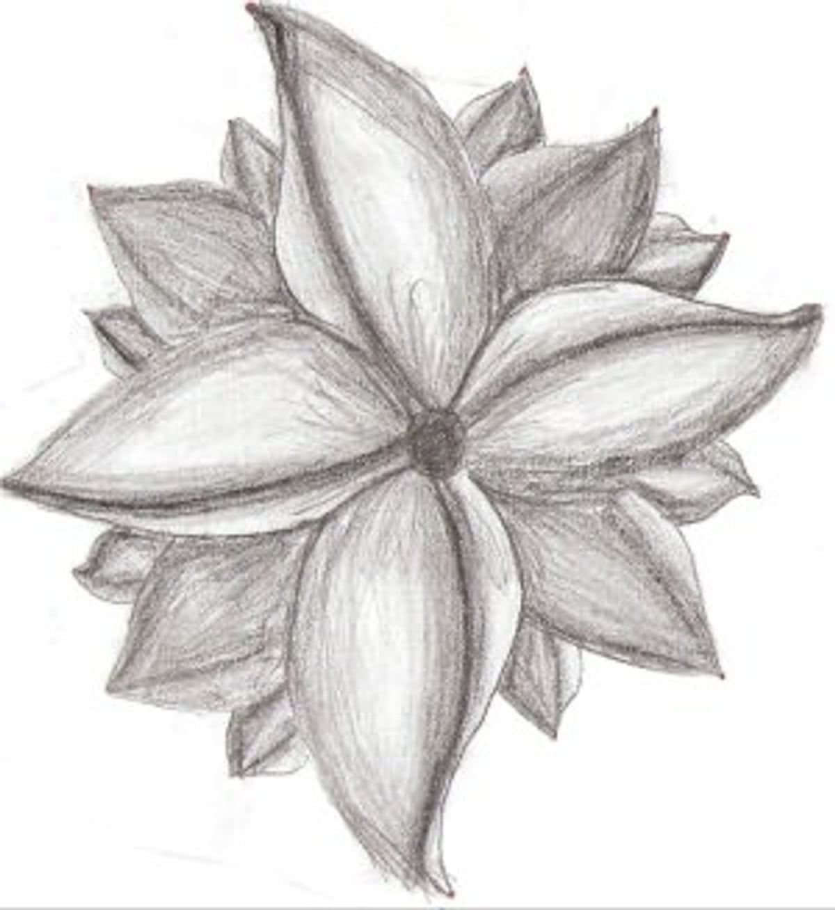 pencil drawing for beginners