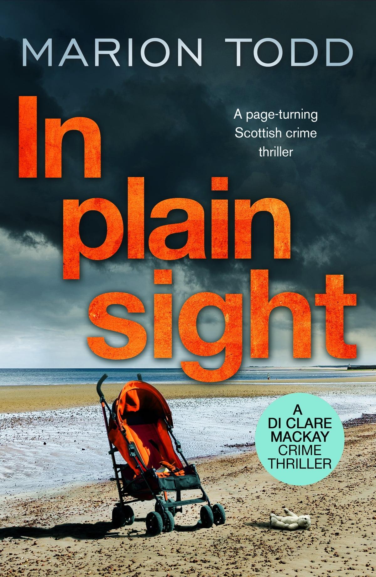 In Plain Sight eBook by Marion Todd - 9781788637480 | Rakuten Kobo United Kingdom