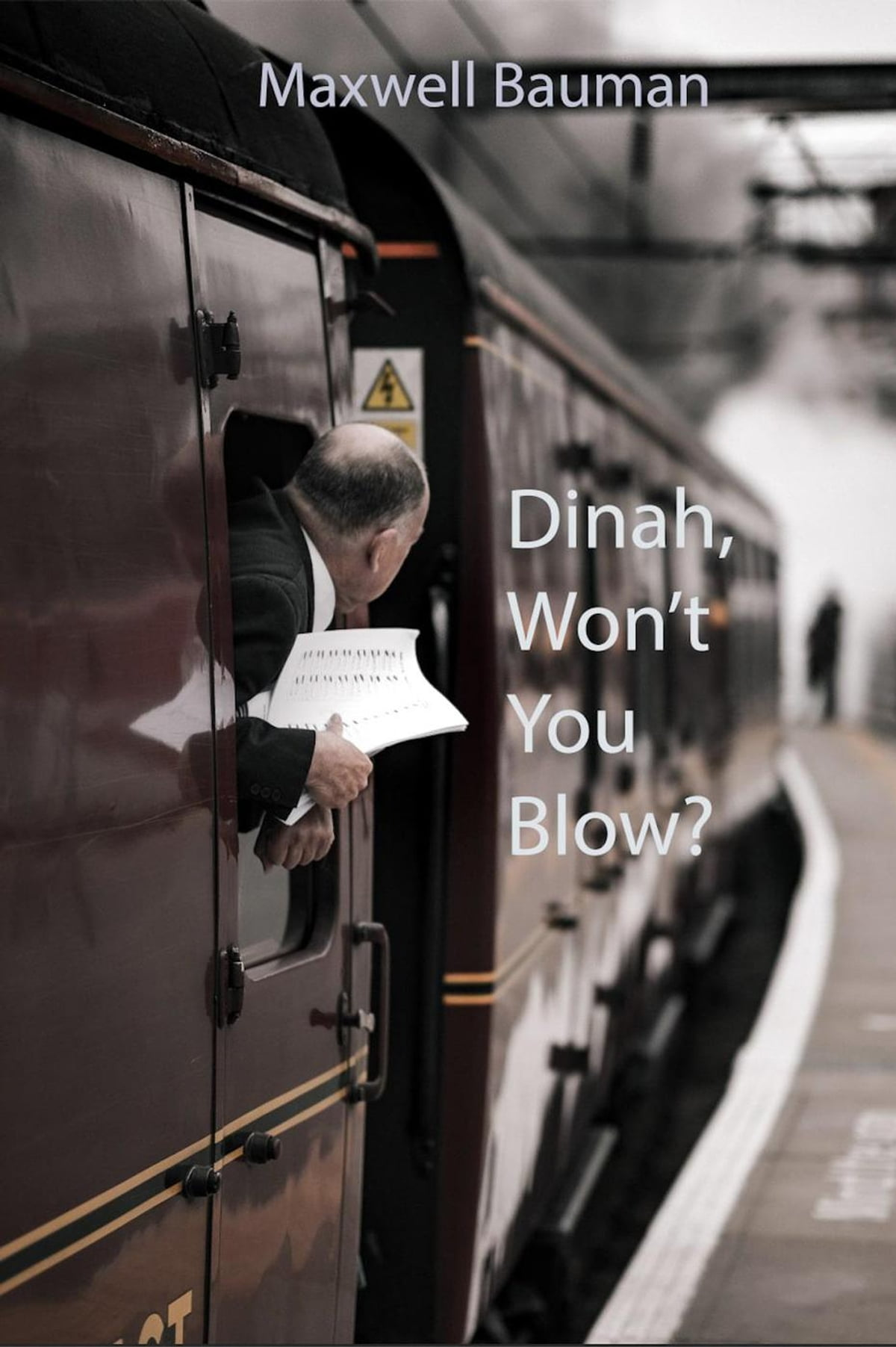 Dinah Won't You Blow : dinah, won't, Dinah, Won't, Blow?, EBook, Maxwell, Bauman, 9781516362356, Rakuten, United, States