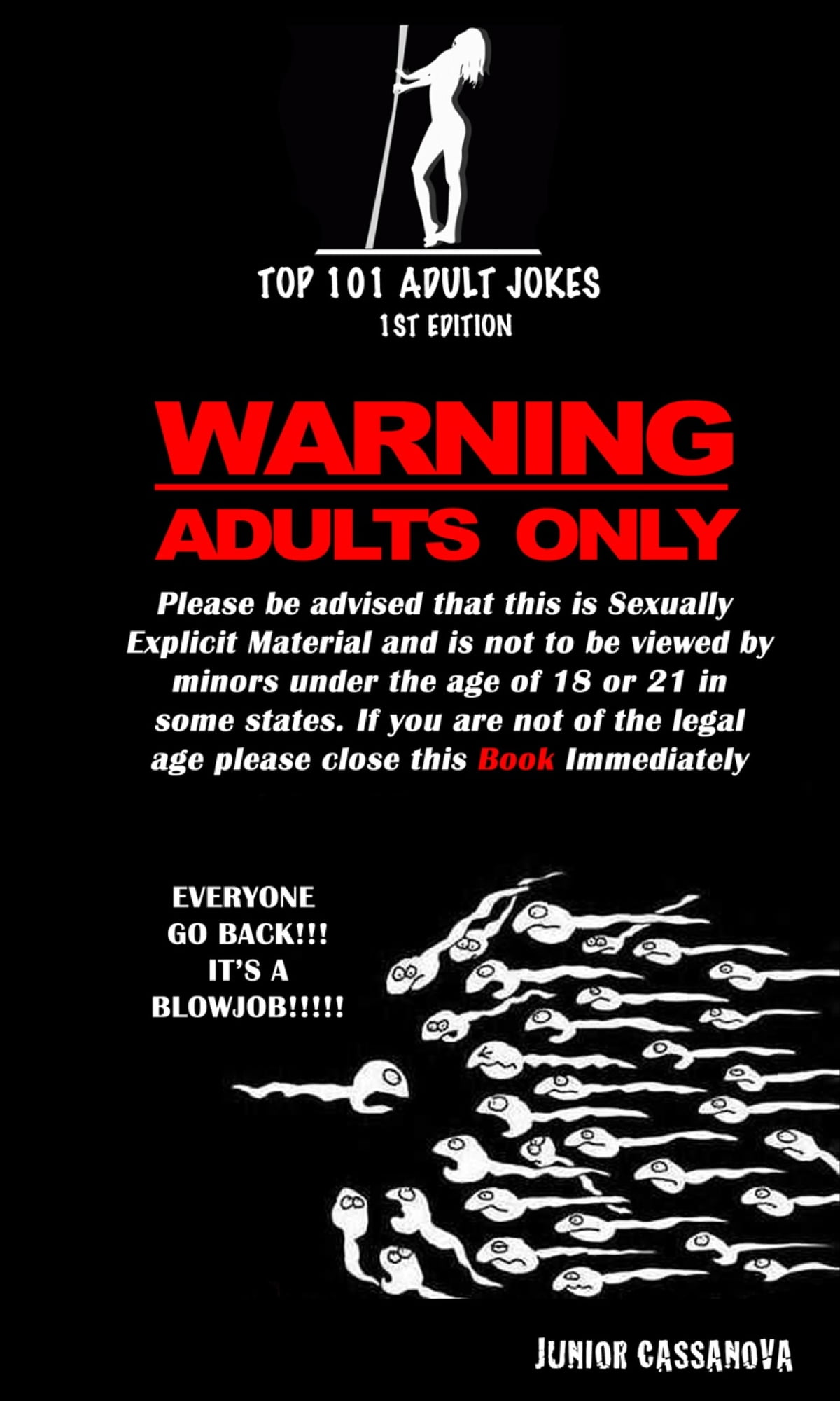 Top 101 Adult Jokes eBook by Junior Cassanova | Rakuten Kobo