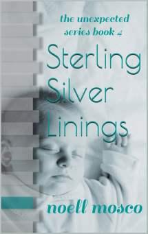 Sterling Silver Linings Ebook Noell Mosco