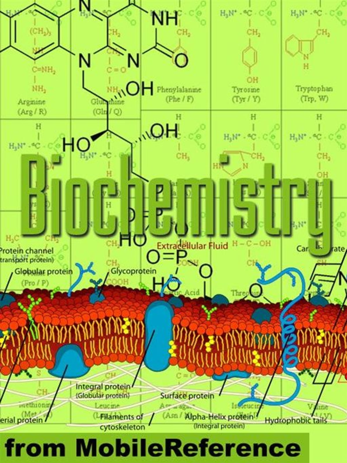 Biochemistry Study Guide Enzymes Membranes And Transport