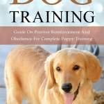 Dog Training Guide On Positive Reinforcement And Obedience For Complete Puppy Training Ebook Por Vanessa Markos 9781386559313 Rakuten Kobo Mexico