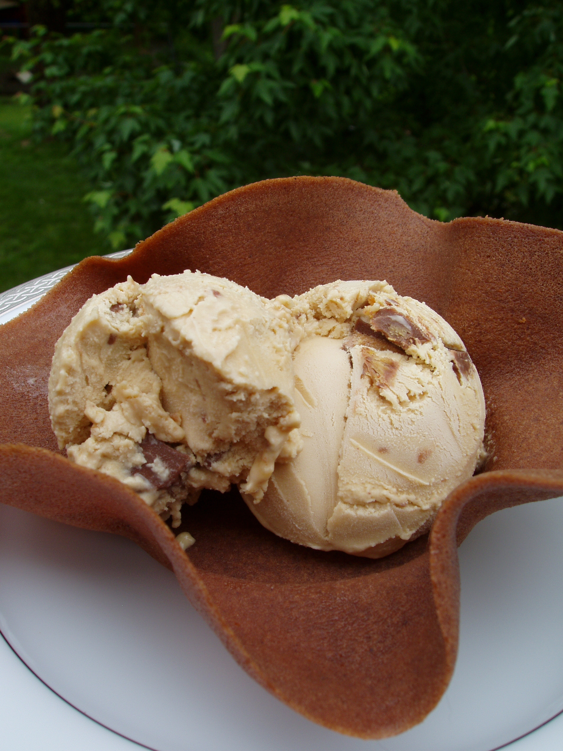 Peanut Butter Ice Cream with Reese\'s Peanut Butter Cups