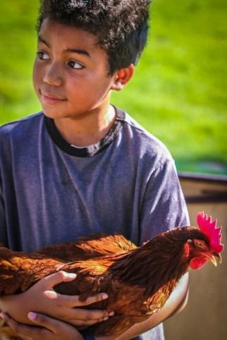 Chomp!chicken