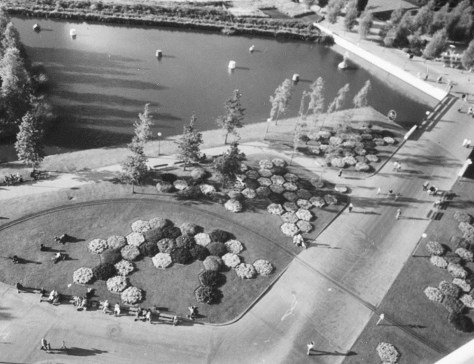 Hexagonal flowerbeds at the entrance of the park, 1972