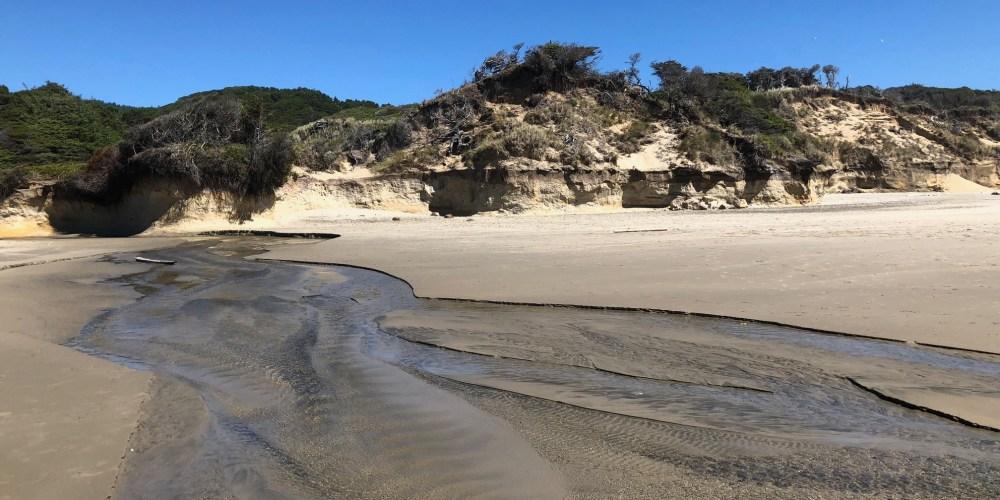 Florence Oregon Sand