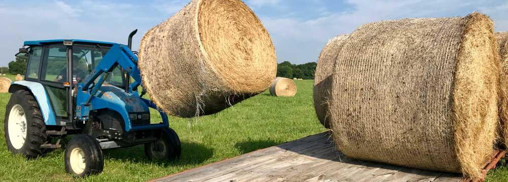 Kansas City Grass-Fed Beef Rancher