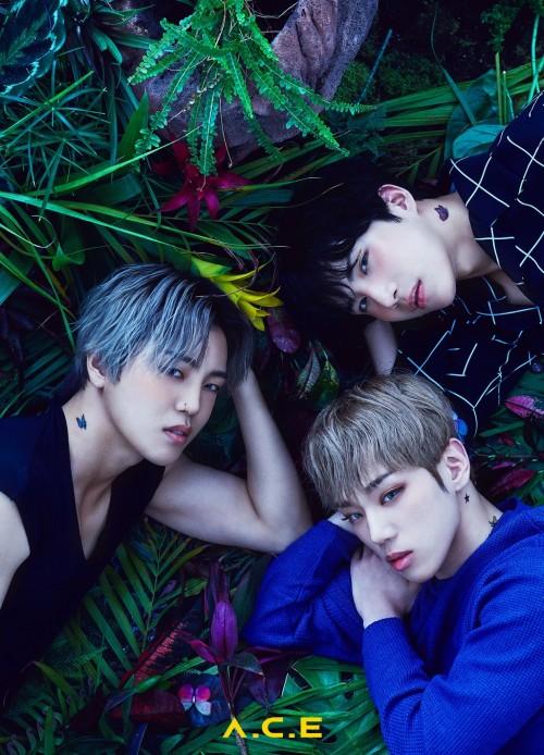 A.C.E - Grass - Byeongkwan - Wow - Donghun 5