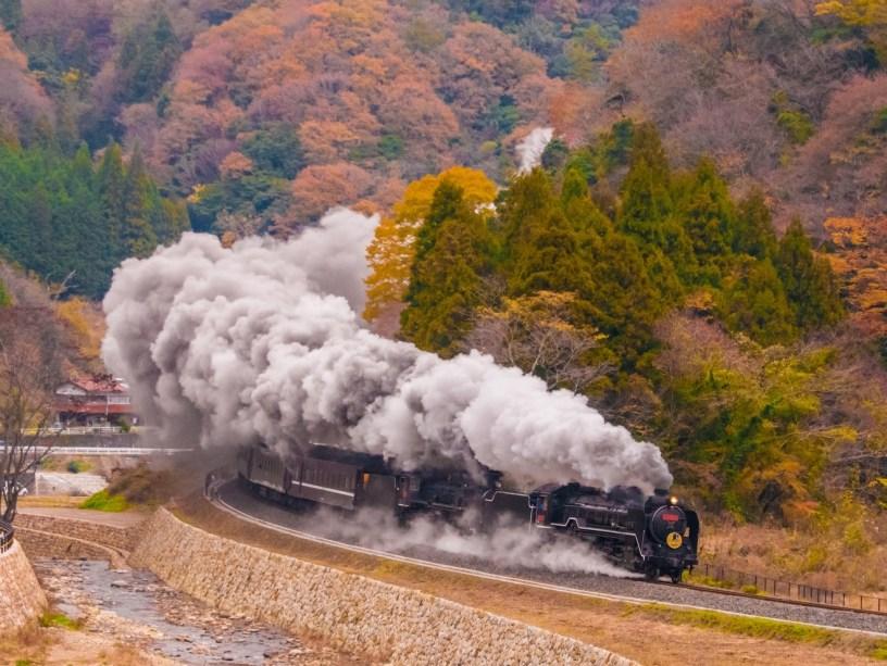 train trivia featured image