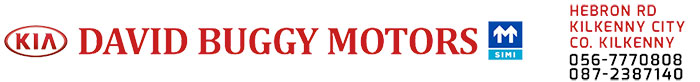 David Buggy Motors