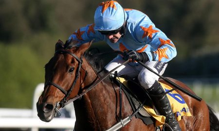 Un De Sceaux. Photo: Cheltenham Tips