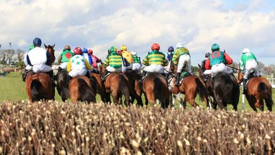 Horse Racing at Punchestown. File Photo.