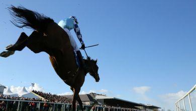 Horse racing. File photo.