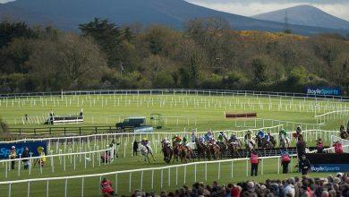 Horse racing. File photo: Edward Whitaker